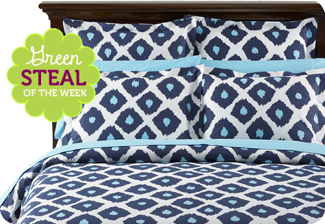 Green Steal of the Week: Ikat Organic Duvet Cover u0026 Sham