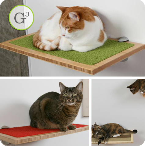 Swuare Cat Habitat by Buddha