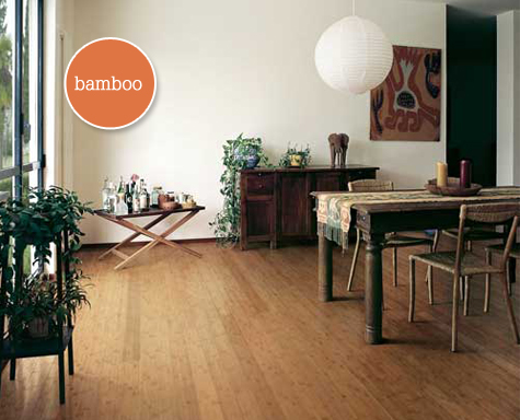 EcoTimber Bamboo flooring - $3.99 per square foot