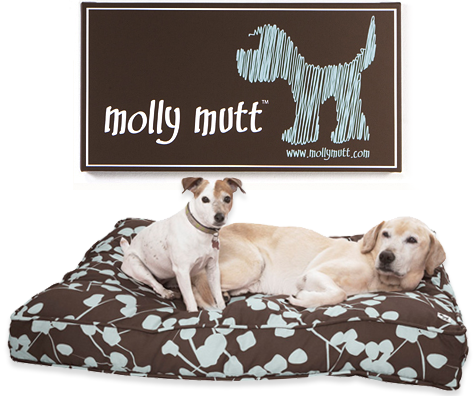 Lap of Doggie Luxury: Molly Mutt Dog Duvet Review + Giveaway! Thumbnail