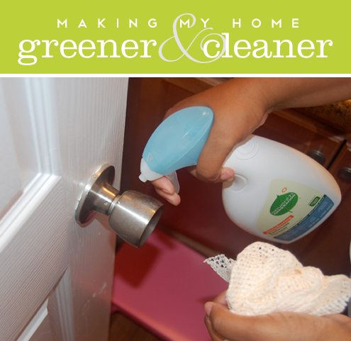 Making My Home Greener and Cleaner, Part 1 Thumbnail