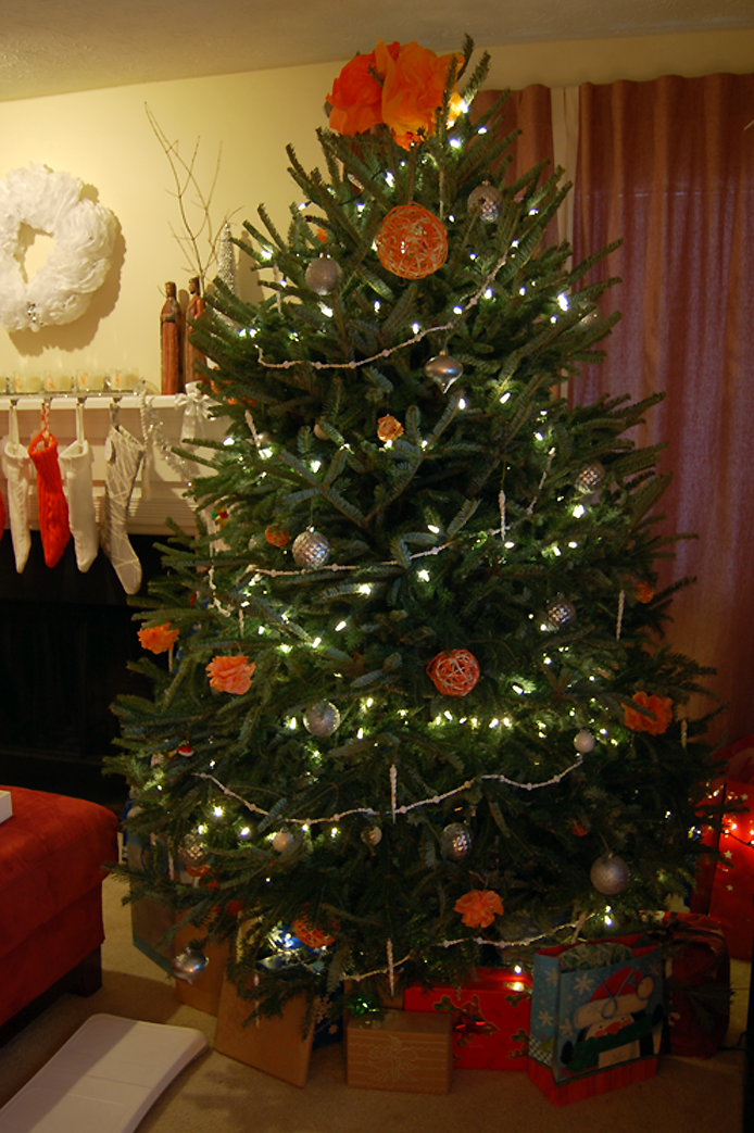 Our Christmas Tree is Up (and I Want to See Yours!) Thumbnail