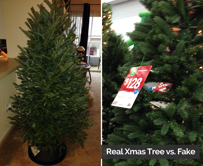 Real Christmas Tree or Fake? Why We Say Real is Greener Thumbnail