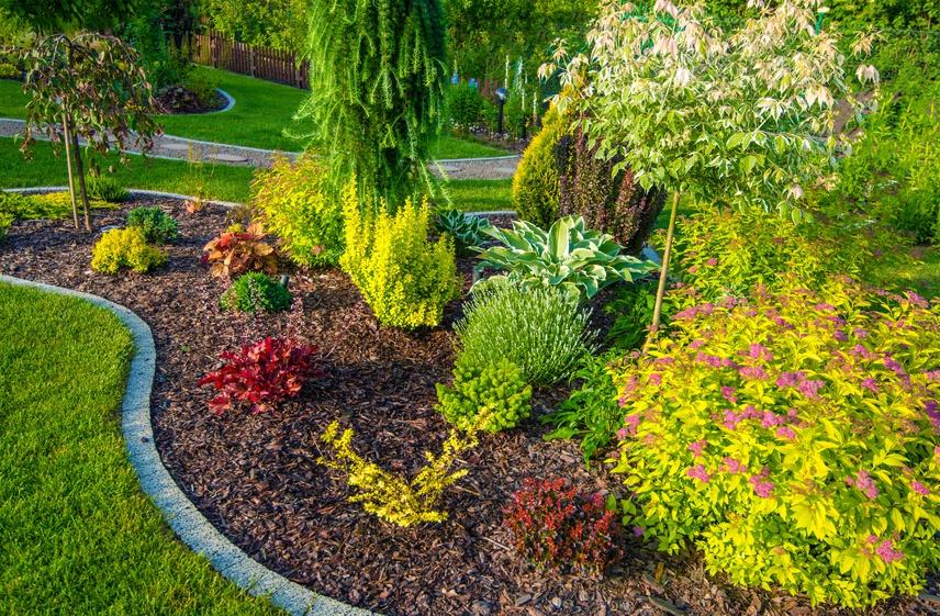 How to Create an Environmentally Friendly Backyard Thumbnail