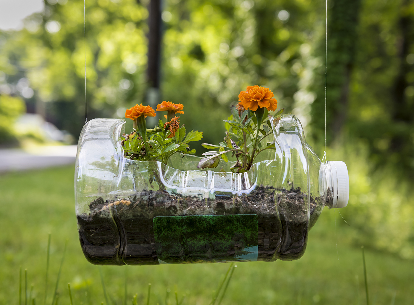 Home Gardening Ideas Using Recycled Materials