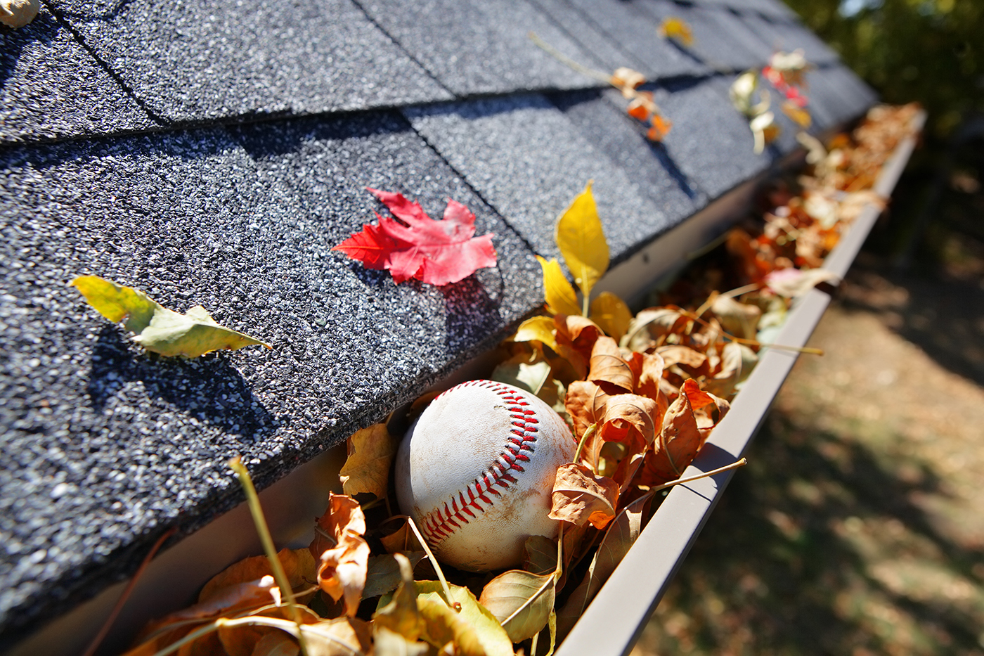 Plan Now to Save Your Gutters in the Fall Thumbnail